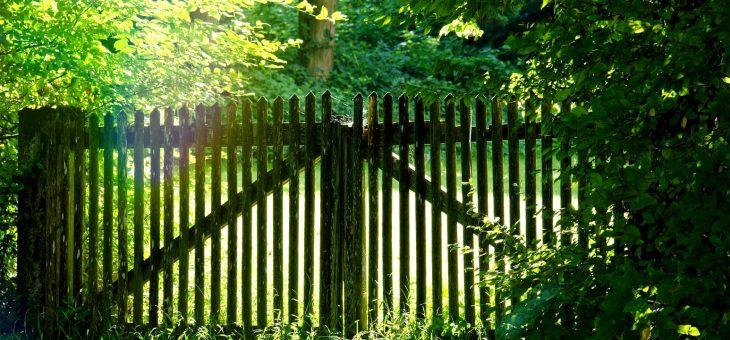 Nachbarrecht: So vermeidet man Streit am Gartenzaun